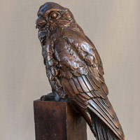 Scultpure of a kestrel bird in bronze