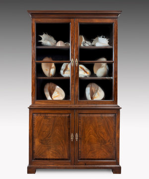 George II mahogany cupboard base bookcase