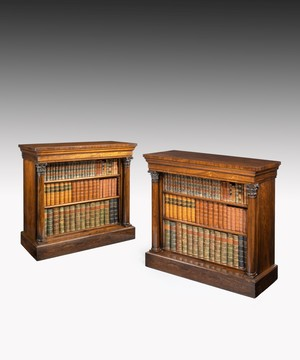 Pair of Regency rosewood bookcases