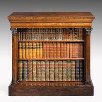 Antique pair of Regency bookcases in rosewood